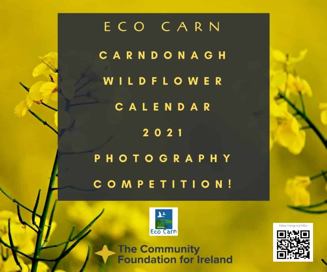 ECO CARN -Photography competition