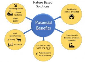 Benefits of NBS
