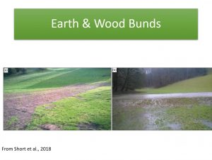 Examples of earthern bunds